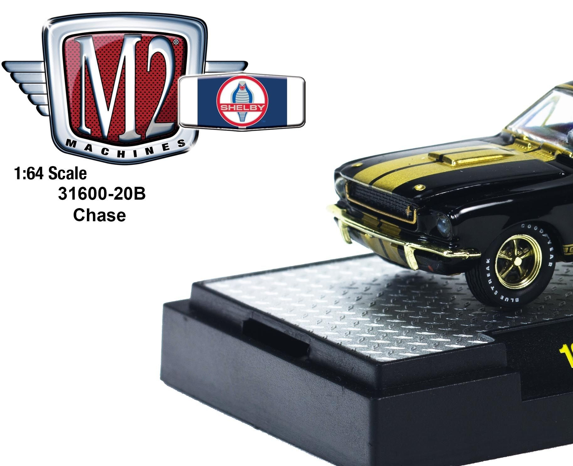 Race Bred: M2 Shelby GT350 Comp Cars Roll Out